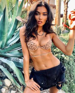 Kelly Gale Leoparskin Bikini 240x300 - Kelly Gale Hot Swimwear Pic