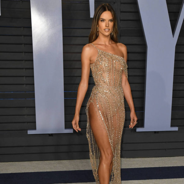 Alessandra Ambrosio Amazing Gala Dress