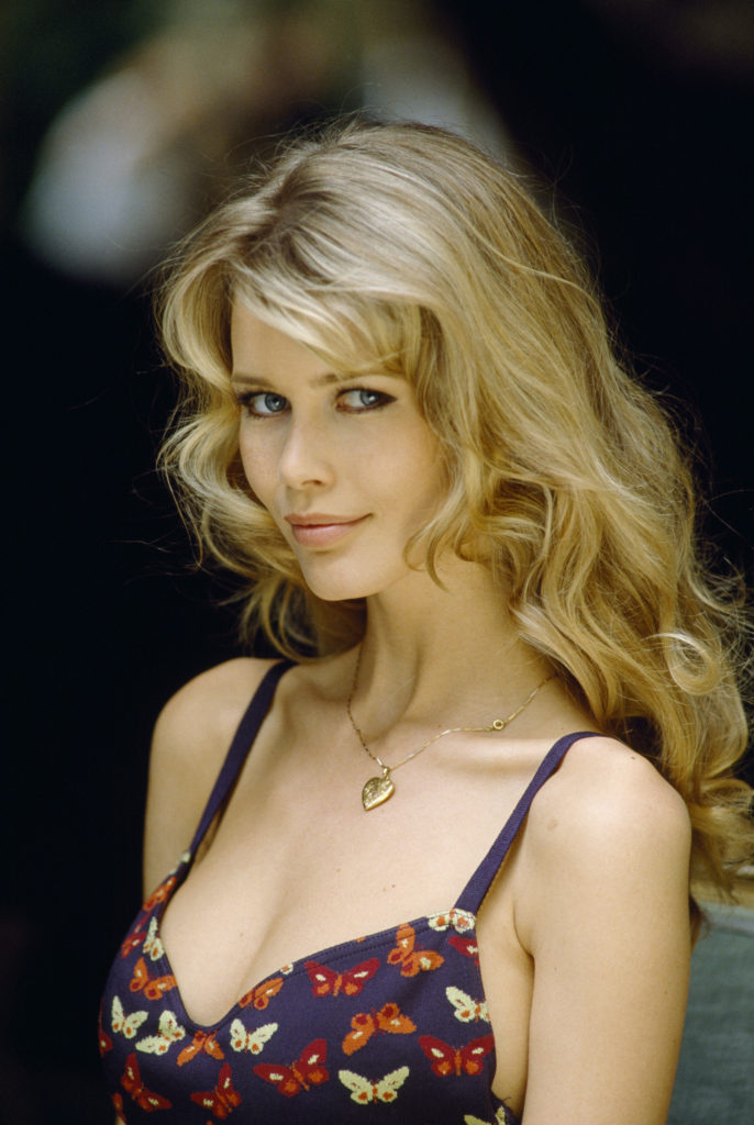 Claudia Schiffer Hot Revealing Dress 686x1024 - Claudia Schiffer Net Worth, Pics, Wallpapers, Career and Biography