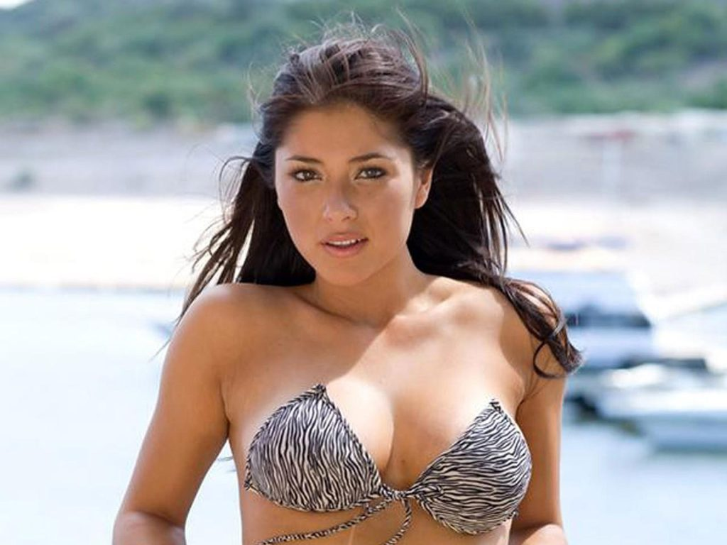 Arianny Celeste Super Hot Bikini Wallpapers 1024x768 - Arianny Celeste Net Worth, Pics, Wallpapers, Career and Biography