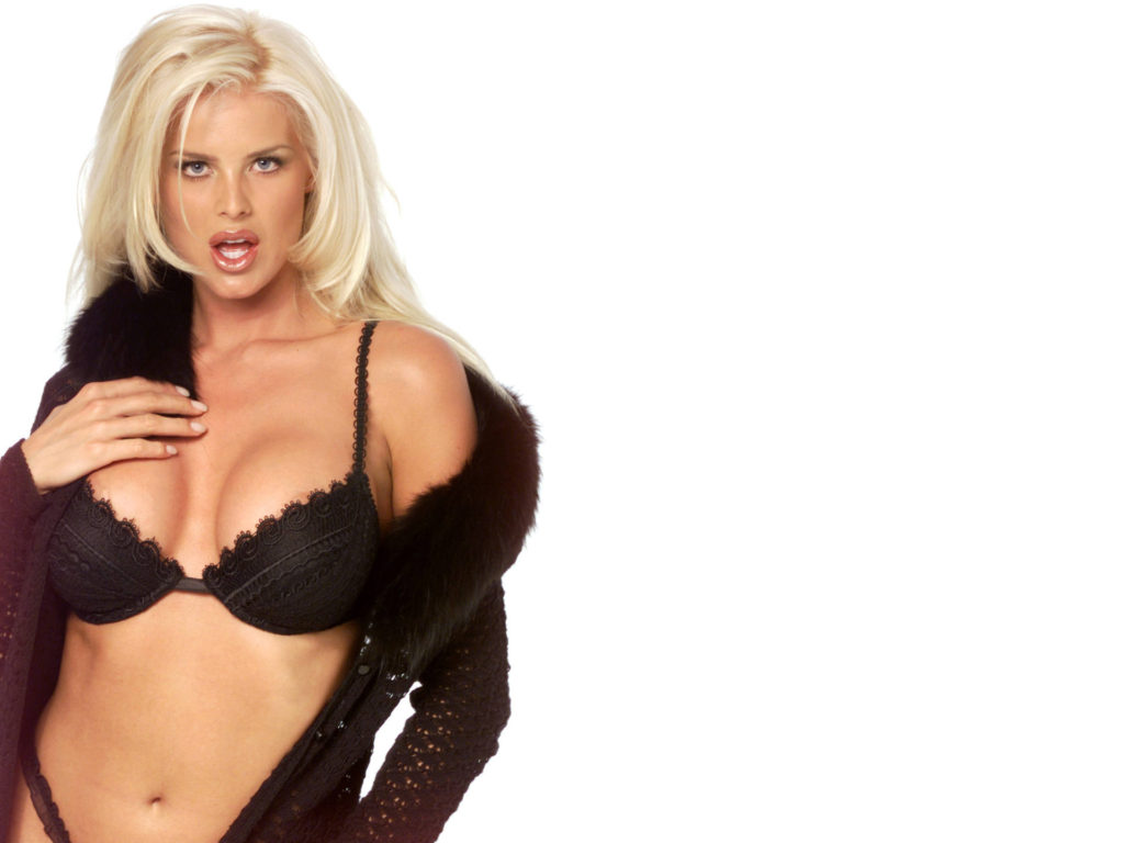 Victoria Silvstedt Hot Black Bra Wallpapers 1024x768 - Victoria Silvstedt Hot Black Bra Wallpapers