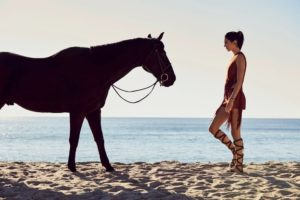 Kendall Jenner Hot Model With Horse